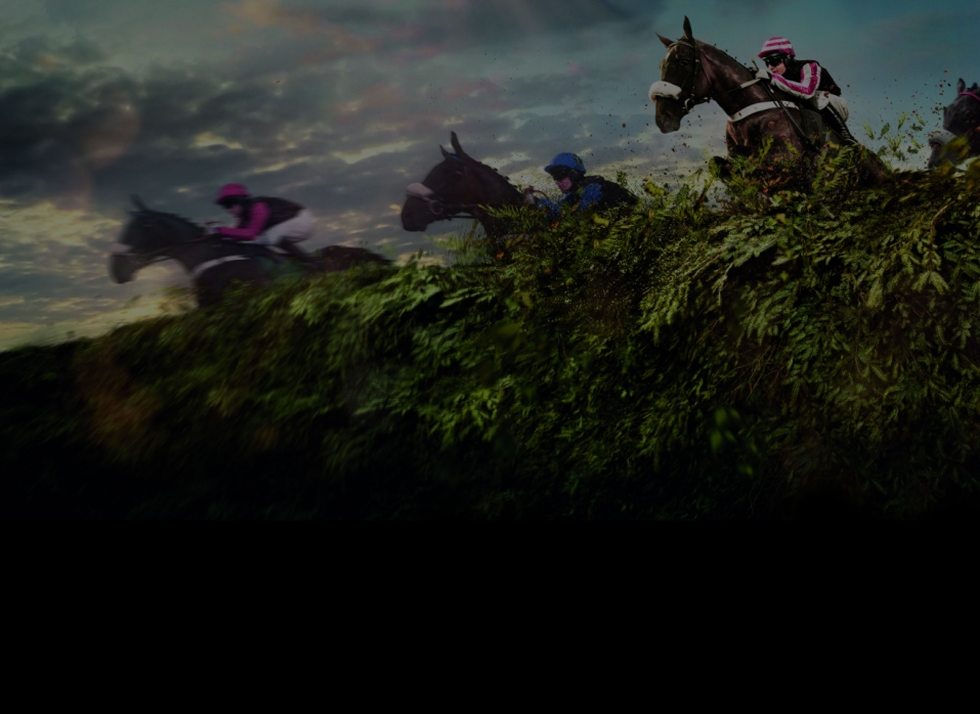The 2017 Grand National